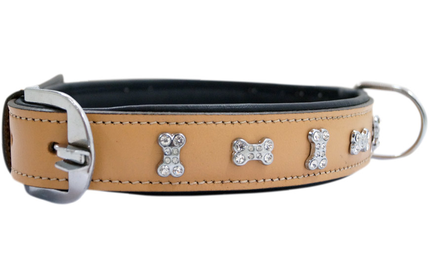 INDIA SALES DOG COLLAR